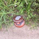 04 - Mini Trail do Lis Caminho de Ferro