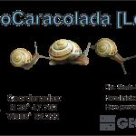 10 - II GeoCaracolada [Leiria]